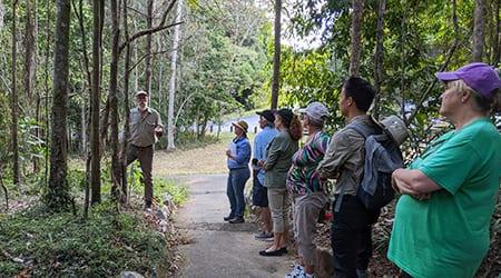 Rainforest field day